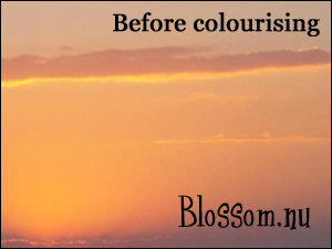 Colourising Tutorial